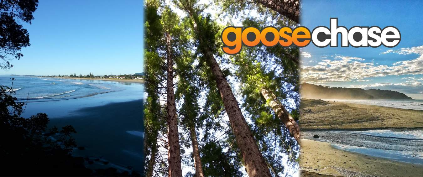 goosechase is back for the holidays! | http://www.virtuallyontrack.co.nz/goosechase | bottomleft